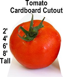 Tomato Cardboard Cutout Standup Prop